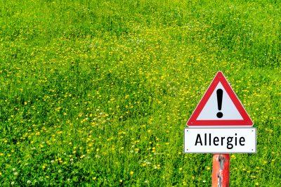 Allergene Pollen: Welche gibt es?