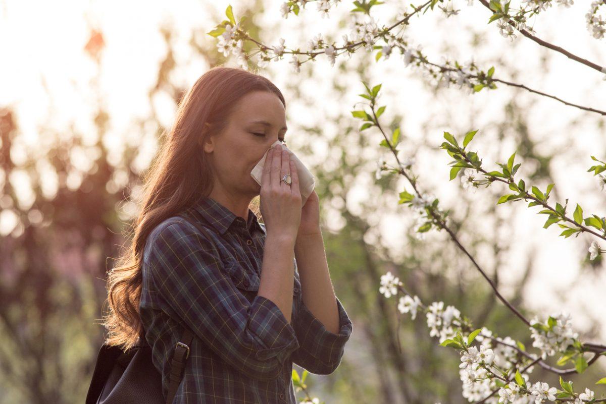 Symptome bei Heuschnupfen: Niesen