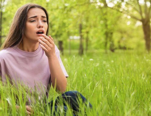 Gräser Allergie